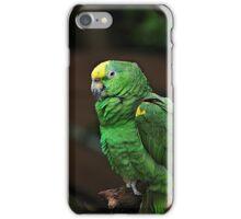 The Parrot Parrots iPhone Case/Skin