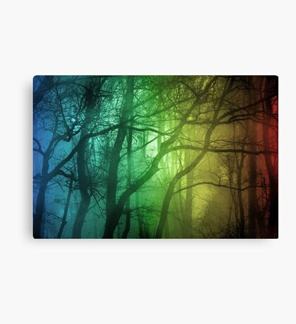 Color Tree, Forest Canvas Print