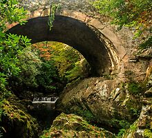 The Old Bridge, Tollymore Forest Park by Adrian McGlynn