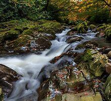 Shimna River Cascade by Adrian McGlynn