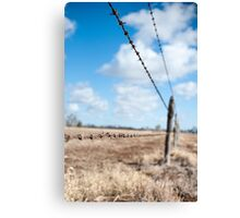 Run The Wire Canvas Print