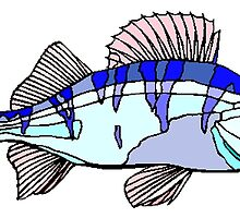 Blue Target Fish by kwg2200