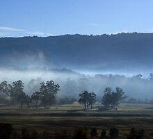 Autumn Mist by WendyJC