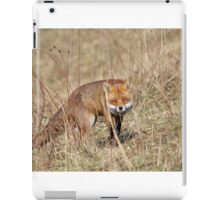 Red Fox (Vulpes vulpes) iPad Case/Skin