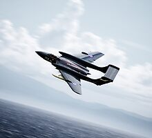 Sea Vixen  by J Biggadike