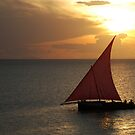 Red Sails in the Zanzibar Sunset, Tanzania by Adrian Paul