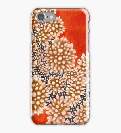 Study n. 5 iPhone Case/Skin