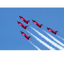 The Gnats  Photographic Print