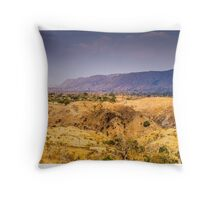 Somewhere in Rajasthan Throw Pillow