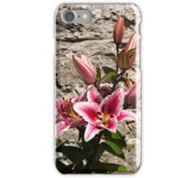 Lily in Front of Stone Wall (watercolour-style) iPhone Case/Skin