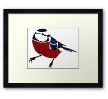 Graffiti Robin Framed Print