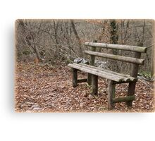 bench in the woods Canvas Print