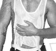 Joe Jonas Shower Sticker