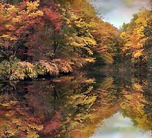Foliage Reflections by Jessica Jenney