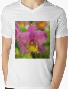 Pinks and Yellows Mens V-Neck T-Shirt