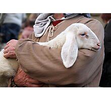 lamb with shepherd Photographic Print