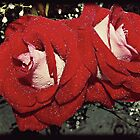Rain and Roses by Chanel70