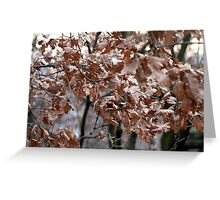 dry leaves on the tree Greeting Card
