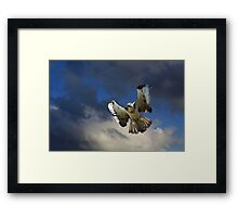 Warning, Warning! Framed Print