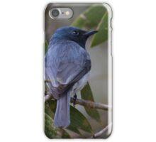 Flycatcher iPhone Case/Skin