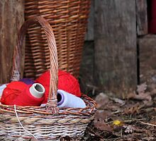 balls of wool in basket by spetenfia
