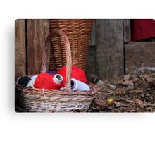 balls of wool in basket Canvas Print