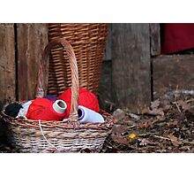 balls of wool in basket Photographic Print
