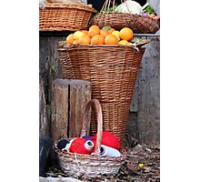 oranges and balls of wool Photographic Print