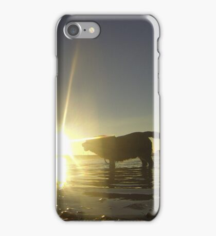 Max in the Sun iPhone Case/Skin