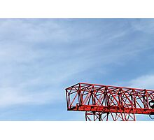 crane in the sky Photographic Print