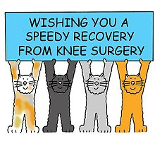 Speedy recovery from knee surgery. by KateTaylor