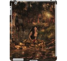 Land of fairytales iPad Case/Skin