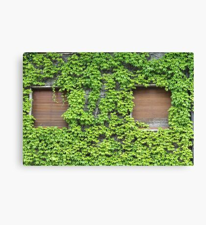 house covered with ivy Canvas Print