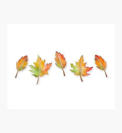Fall Leaves Set (with shadows) Photographic Print