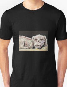 Falkor the Luck Dragon. T-Shirt