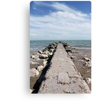 sea and beach Canvas Print