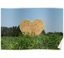 heart hay in the countryside Poster