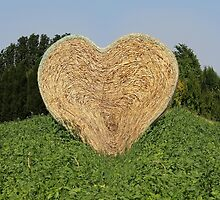 heart hay in the countryside by spetenfia