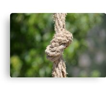 knot on the rope Canvas Print