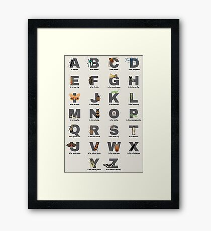 Insect Alphabet Framed Print