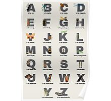 Insect Alphabet Poster