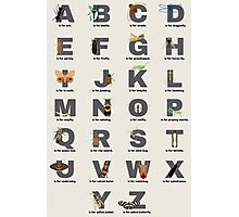 Insect Alphabet Photographic Print
