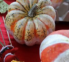 decorated pumpkins by spetenfia