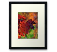 Red, red, my world is red Framed Print