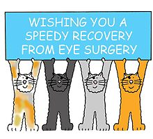 Speedy recovery from eye surgery with cats. by KateTaylor