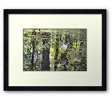 Waiting And Wading Framed Print