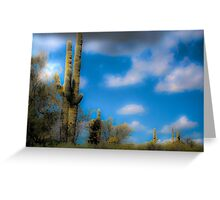 Palo Verde and Saguaro Greeting Card