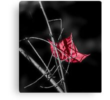 Cool Red Canvas Print