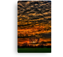 Sunset over Willow Park. Canvas Print