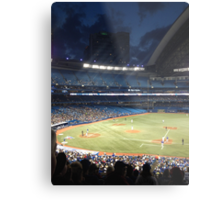 Blue Jays  Metal Print